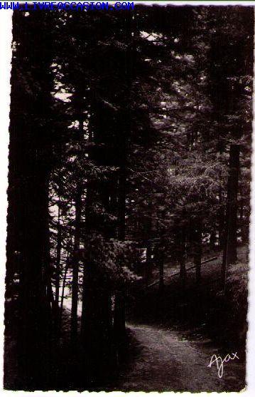 Montfaucon En Velay carte postale